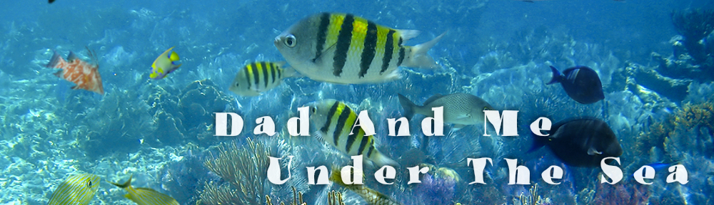 Dad and Me Under The Sea Book App